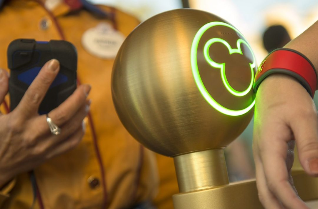 My First Trip To Disney World: What You Need To Know