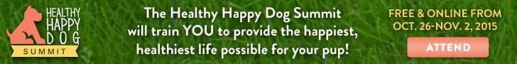 HappyDogLogo