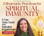 Shaman's Spiritual Immunity