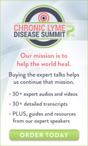 The Chronic Lyme Disease Summit 2!: FREE from HealthTalks Online 4 The Chronic Lyme Disease Summit 2!: FREE from HealthTalks Online