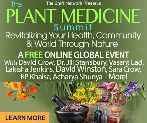 The Plant Medicine Summit: Restore Balance & Experience Deep Healing;  FREE from the ShiftNetwork 4 The Plant Medicine Summit: Restore Balance & Experience Deep Healing;  FREE from the ShiftNetwork