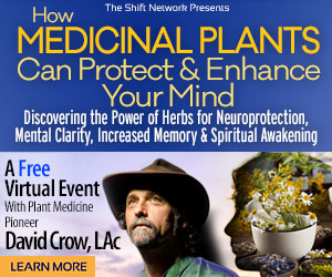 How Medicinal Plants Can Protect & Enhance Your Mind withDavid Crow: FREE from the ShiftNetwork 4 How Medicinal Plants Can Protect & Enhance Your Mind withDavid Crow: FREE from the ShiftNetwork