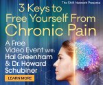 3keystofreechronicpain - Being Free From Chronic Pain: The Shift Network