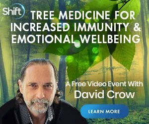Heal with the Trees!