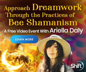 Bee Shamanism