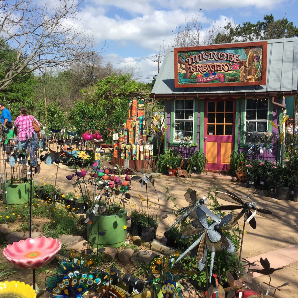 6 austin shops blooming with patio