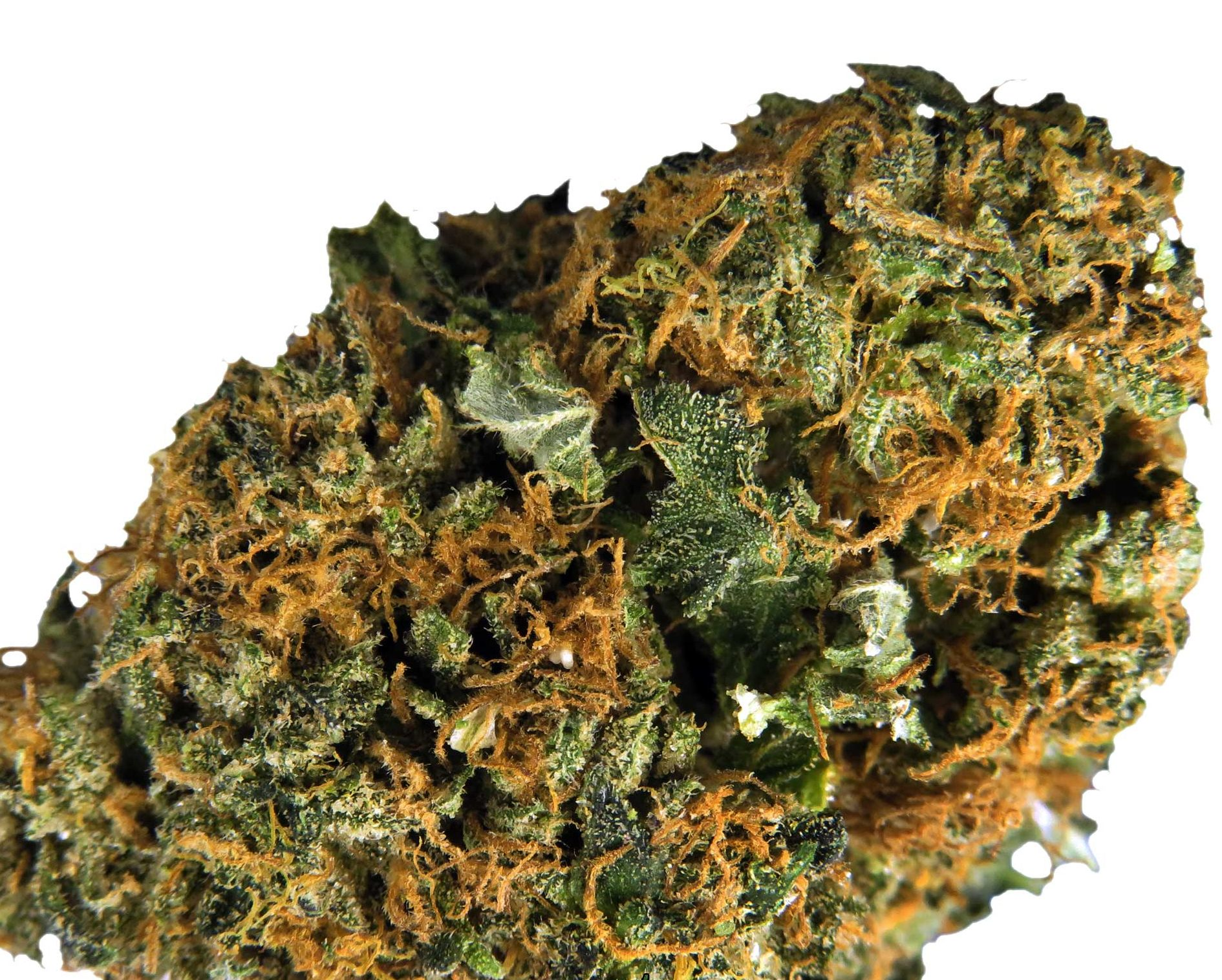 MK Ultra is Mind-Altering heavy hitter
