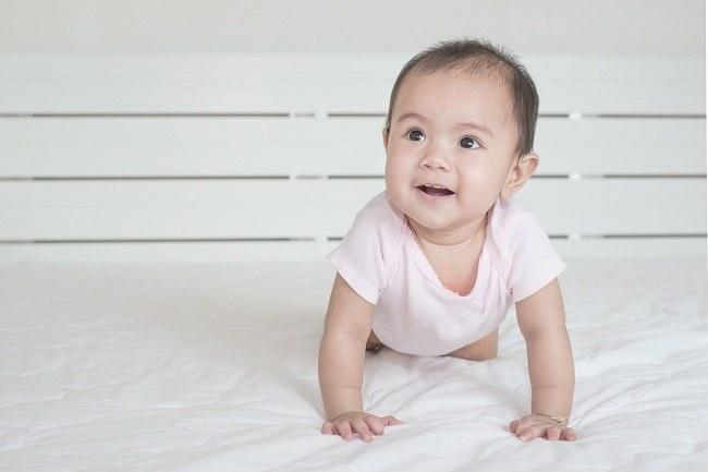 Bayi 7 Bulan, Alodokter