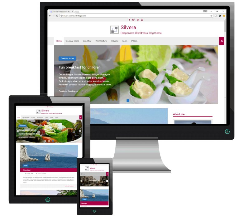 Silvera - Responsive WordPress Blog Theme - 1