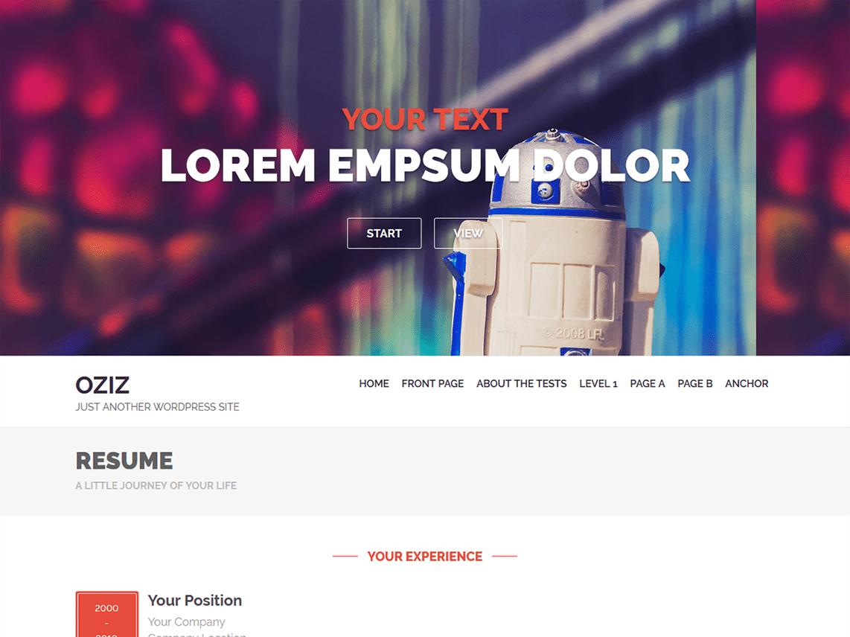 Oziz WordPress Theme