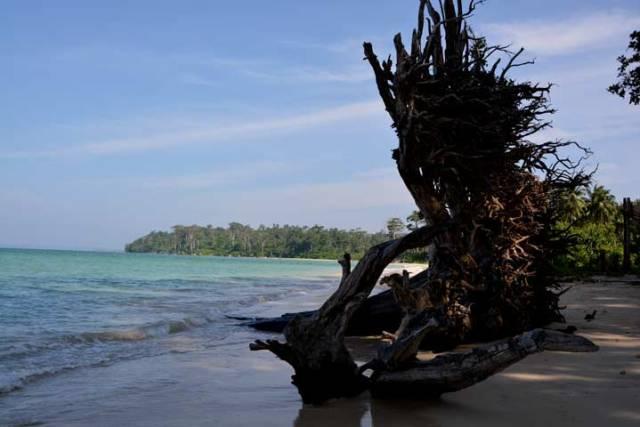 andaman, nicobar, islands, visit, places, explore, beauty, tour, expense,