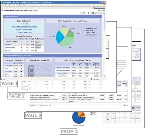 SAP BW Multipage Report