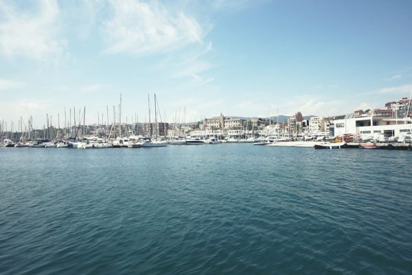 gastrolonia-port