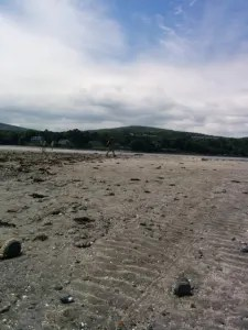 On another day, we walked across to Bar Island. It was fun on the way back as the tide rose and we had to wade through the water to get back!