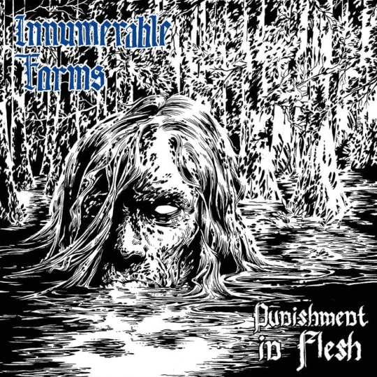 Innumerable Forms - Punishment in Flesh