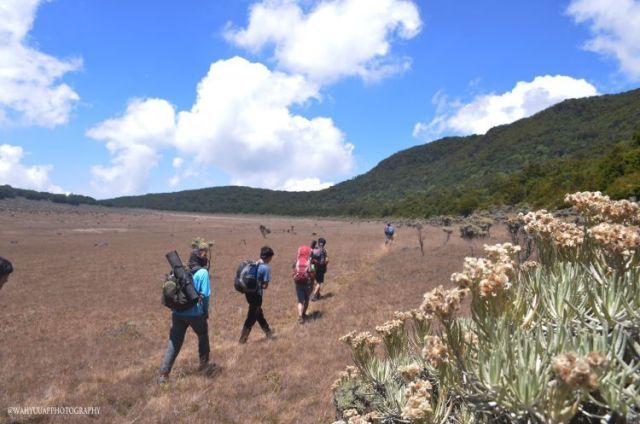 trekking di surya kencana 750x497 Menyatu dengan Alam, Ini 5 Gunung yang Cocok Buat Perayaan Kemerdekaan