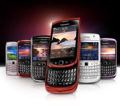 blackberry on display