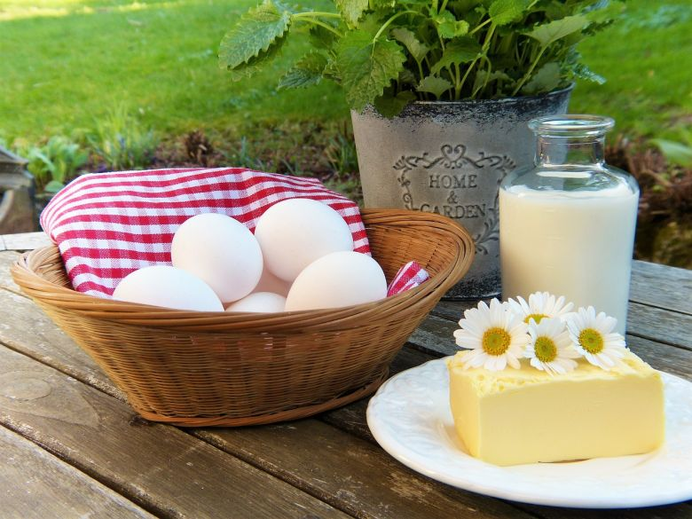 egg with milk