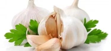 acne garlic