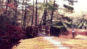 Bridge to Malonee Trail crosses the stream feeding into Balsam Lake NC