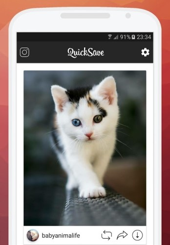 Using QuickSave for Instagram Application