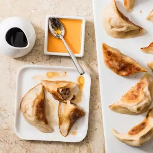 Chinese Pork Dumplings   Cook s Illustrated