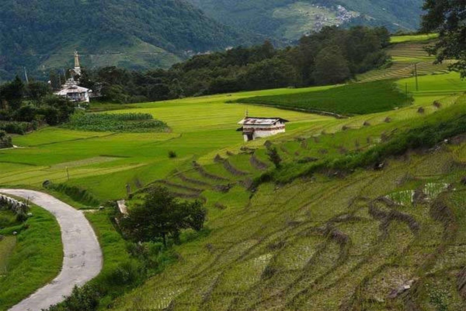 Assam Arunachal Tour Package