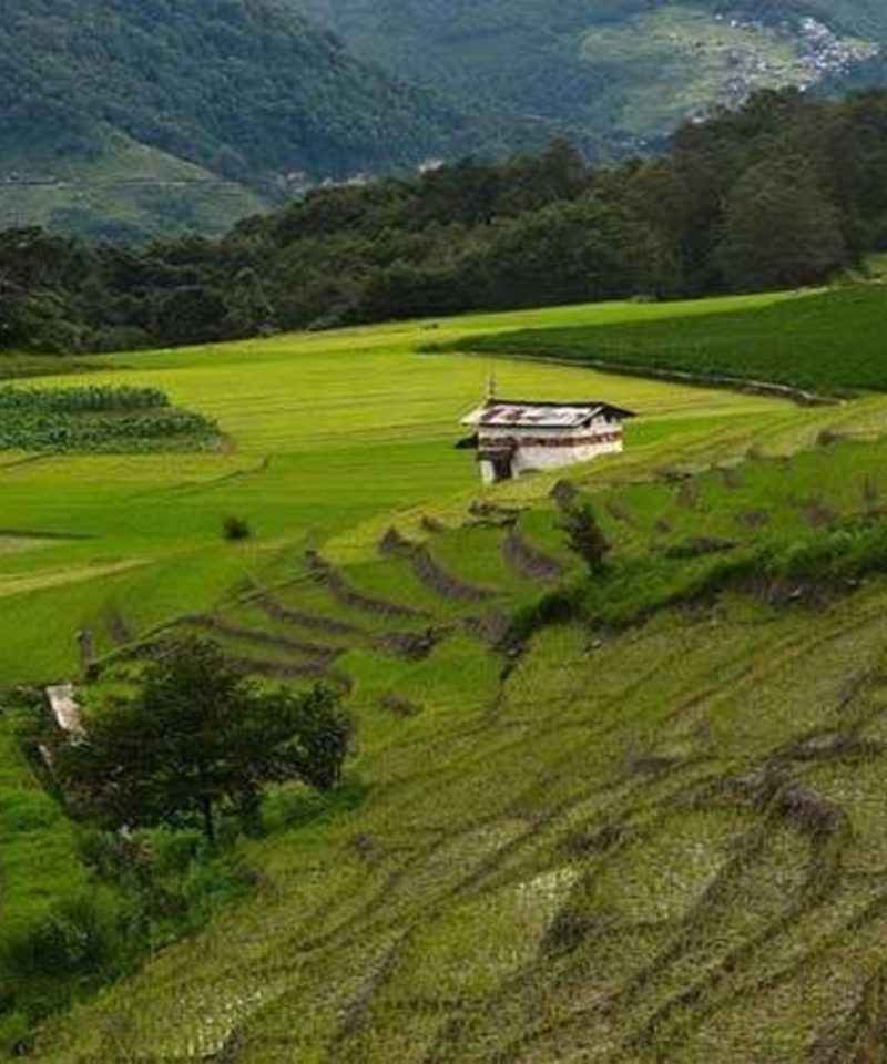 Assam Arunachal Tour Package