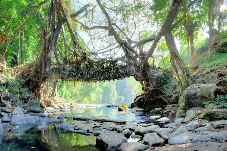 Assam Arunachal Tour Sightseeing 3