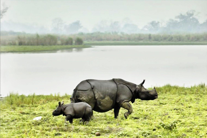 Assam Arunachal Tour Sightseeing 2