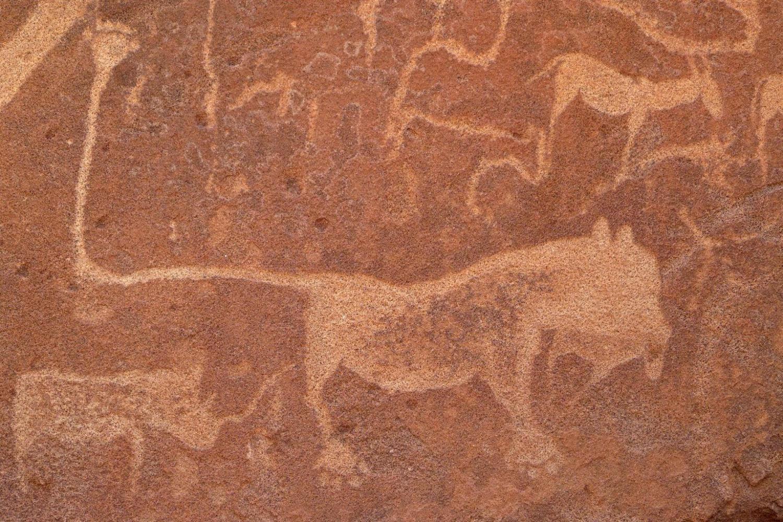 Namibia Tour Sightseeing 6
