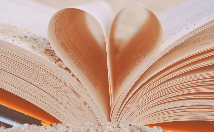 book close up color decoration