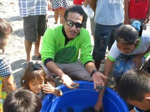 Puluhan Ekor Tukik Dilepas di Pantai Sumbersari