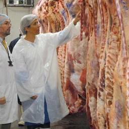 Requisitos para habilitación de mataderos frigoríficos (bovinos, porcinos y ovinos) en Argentina