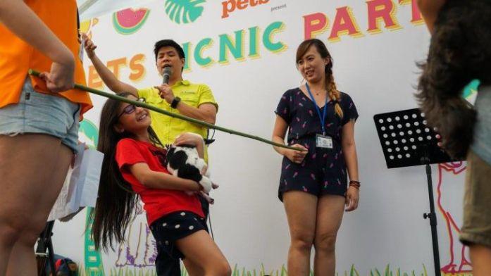 Pets picnic Limbo