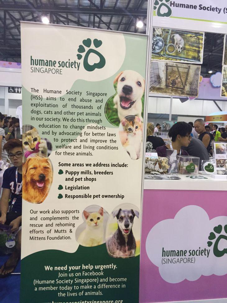 singapore-pet-expo-2015-418