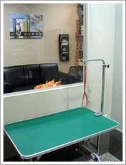 kohepets grooming interior