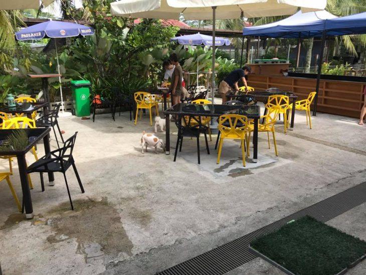 Ulu Ulu Pet Cafe