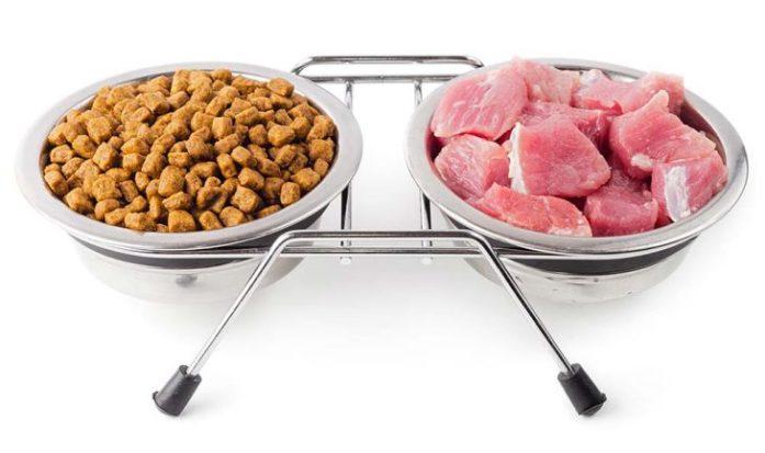 Kibble Meat Balance