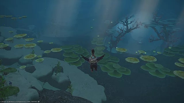 FFXIV Stormblood Guide How To Dive Underwater Final Fantasy XIV Stormblood