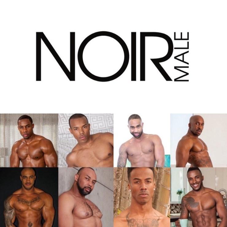 Noir Male (image supplied)