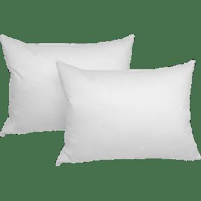 2-Pack: iEnjoy Home Down Pillows Dish Nation deals