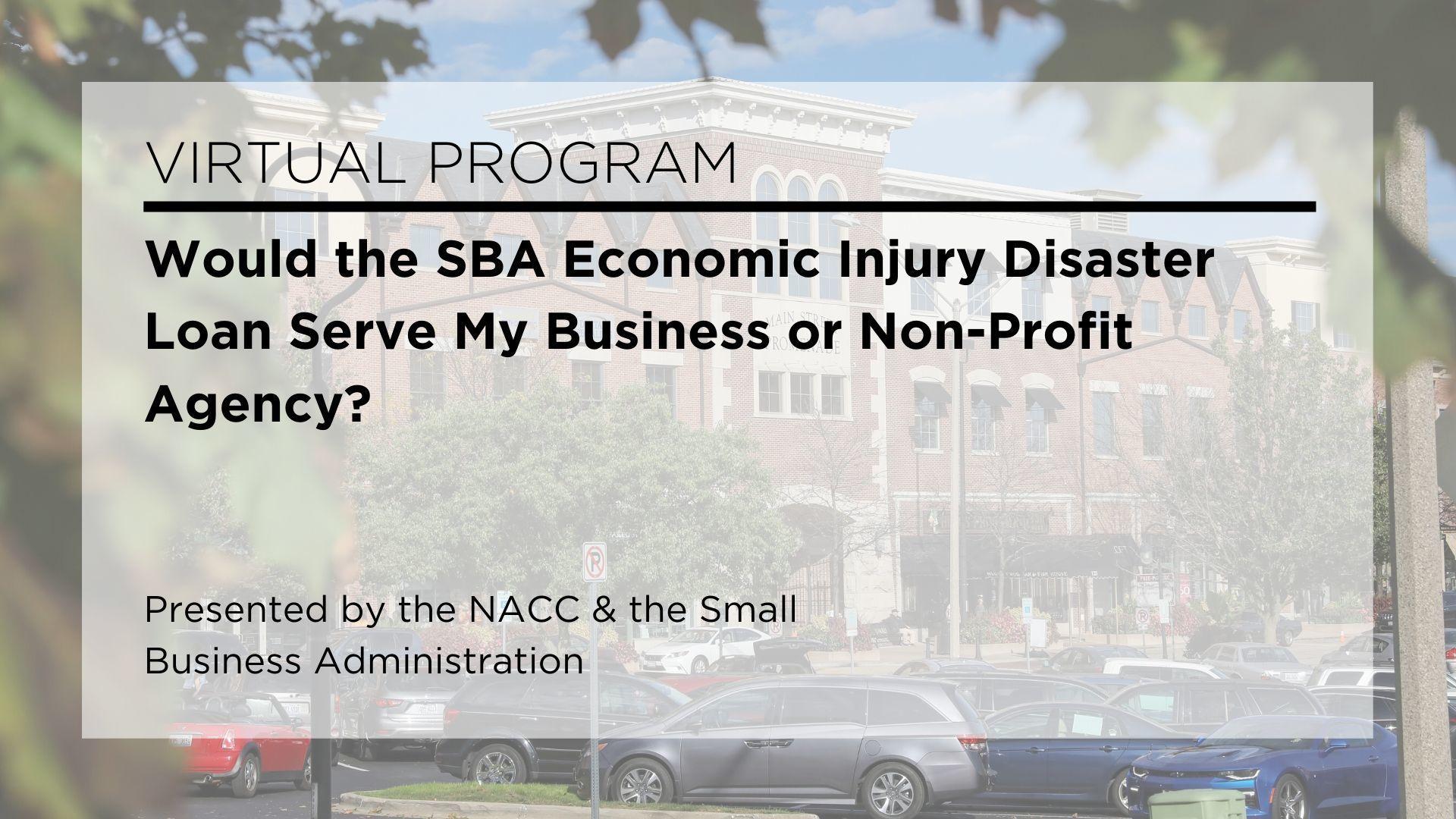 Virtual Program Would The Sba Economic Injury Disaster