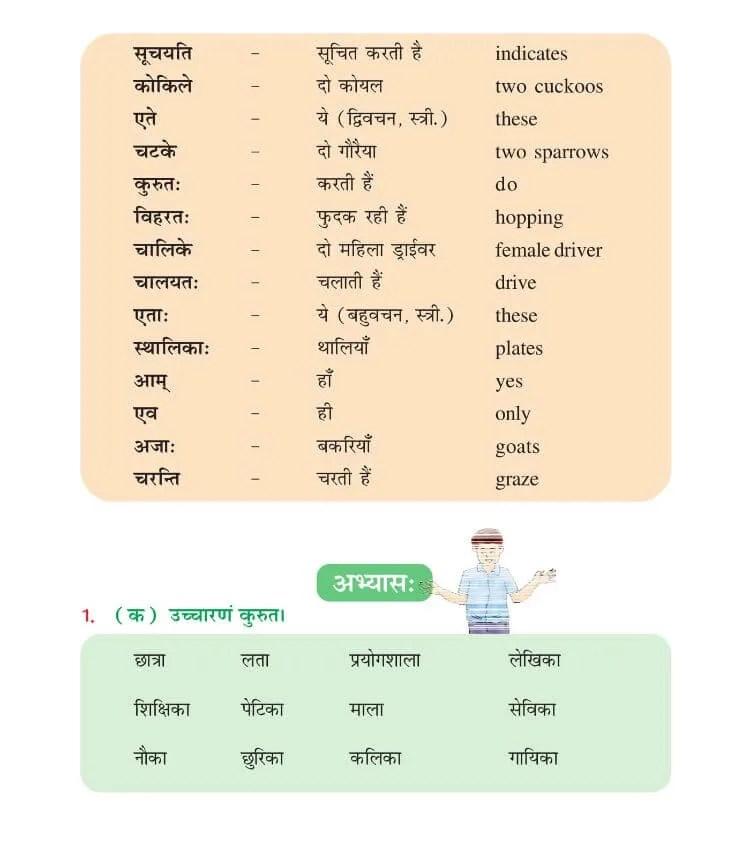 NCERT Solutions For Class 6 Sanskrit Chapter 2 शबदपरिचय:-॥