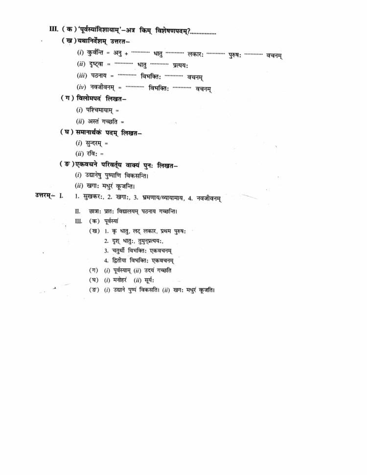ncert-solutions-class-9-sanskrit-abhyaswaan-bhav-chapter-1-apathitabodhanm-8