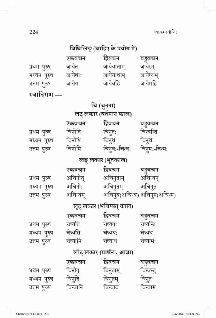 ncert-solutions-class-9-sanskrit-vyakaranavithi-chapter-14-parishist-dhaturupani-46