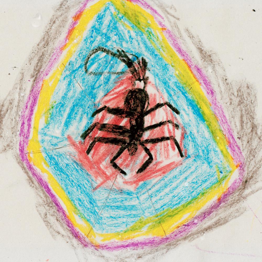 Spider Rain