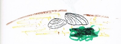 septone illustration