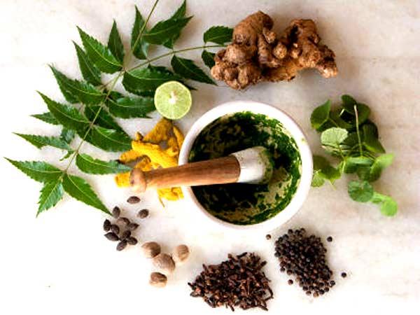 Obat Herbal Diabetes yang Ampuh
