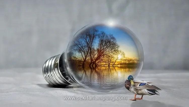 Danau Bebek Lampung Timur